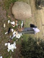 Esta foto está situada en el comienzo del camino de campo azalvaro. Está así desde hace más de una semana