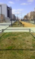 Sólo dar una vuelta por cualquier parque de la ciudad , cualquier acera, mirar cualquier alcorque,  para encontrarnos con un auténtico estercolero perruno. Una maravilla para el paseante y un ejemplo de limpieza y educación.
