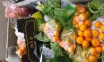 Cada día se arrojan a la basura 3,6 millones de kilos de comida en España. Algunos aún no creen esta vergüenza. Valga una imagen de hoy en Valladolid (C/ Hípica)como muestra. Pensemos en mercados centrales, carnicerías, panaderías, supermercados, restaurantes, industria, en los barcos y las tierras. Una infamia. #despilfarrocero.