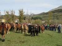 La Pernía celebra mañana su tradicional Feria del Caballo