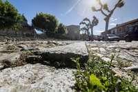 Patrimonio avala la mejora del pavimento de Las Huelgas