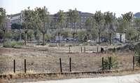 PP pide plan para Vega Baja, pero ve «necesario» el cuartel