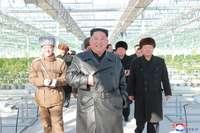 Corea del Norte abrirá sus puertas al turismo médico en 2020