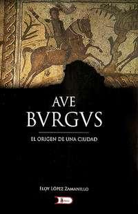 Publican la tesis que defiende el origen romano de Burgos