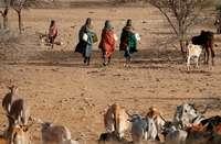 Once millones de personas en riesgo por la sequía de África