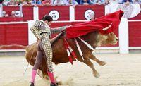 Los Aficionados al Toro, disconformes con las ganaderías