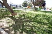 Parques infantiles a mejorar en Pedro Lamata