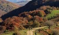 Dos ciclistas avanzan por un camino de la Sierra de la Demanda.