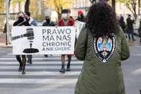 Polonia falla que el aborto por malformación fetal es ilegal