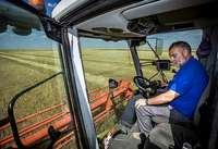 El agricultor y su hijo pasan jornadas de  más de once horas en la cosechadora en sus tierras del término municipal de Velliza.