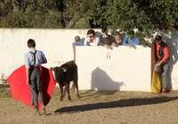 Los alumnos estuvieron pendientes de las indicaciones del profesor de la Escuela Taurina.