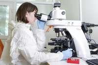 La OMS advierte que las vacunas no erradicarán a la COVID-19