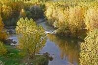 El color del otoño en el Cerrato