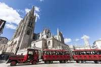 El tren y los buses turísticos no llegarán hasta el verano