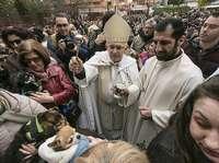 El Asilo acogerá hoy la bendición de los animales
