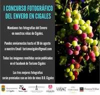 Cartel I Concurso de fotografía digital sobre el Envero