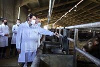 El presidente de la Junta de Castilla y León visita una explotación ganadera en Cogeces del Monte