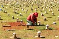 Brasil alcanza las 27.800 muertes por coronavirus