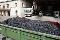 Un remolque cargado con uva frente a una bodega riojana.