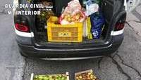 Requisados 120 kilos de alimentos con destino a Logroño