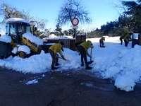 Unos operarios limpian las calles de la ciudad.
