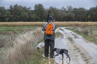 Imagen de archivo de un cazador junto a dos perros en la provincia de Palencia.