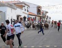 Este año podrían volver los encierros a las calles. De hecho, Villaseca de la Sagra está haciendo un protocolo estricto.