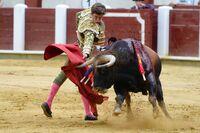 Segunda tarde de toros en Valladolid