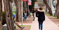 Los universitarios cumplen. El mercado laboral no les premia