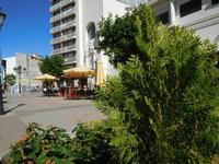 Amplían la exención de pago de terrazas en Villarrobledo