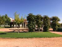 Presentan el 'I Festival de Primavera Villa de Tobarra'