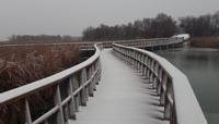 Las Tablas de Daimiel cubiertas de nieve