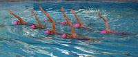 Campeonato de España de verano de natación artística