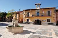 El Ayuntamiento aprueba una Ordenanza reguladora del arbolado en casco urbano.