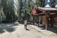 El parque de El Barriles, ubicado en pleno corazón de Aranda, junto al río Duero, es uno de los más transitados.
