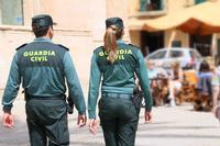 Cae una red que introducía en España cocaína oculta en piñas