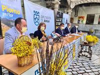 El XI Festival del Piorno en Flor, desde el 22 de mayo