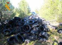 Neumáticos abandonados por los investigados en zonas arboladas.
