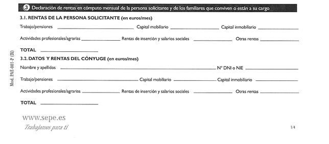 Imagen 2: Parte de la primera hoja de una solicitud tipo descargada del BOE en la que Vanesa Guzón debió declarar que percibía rentas del Ayuntamiento.