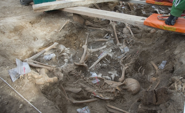Nueva fosa común en Estépar en la que se han hallado una veintena de restos de asesinados durante la Guerra Civil. Ricardo Ordóñez (ICAL)