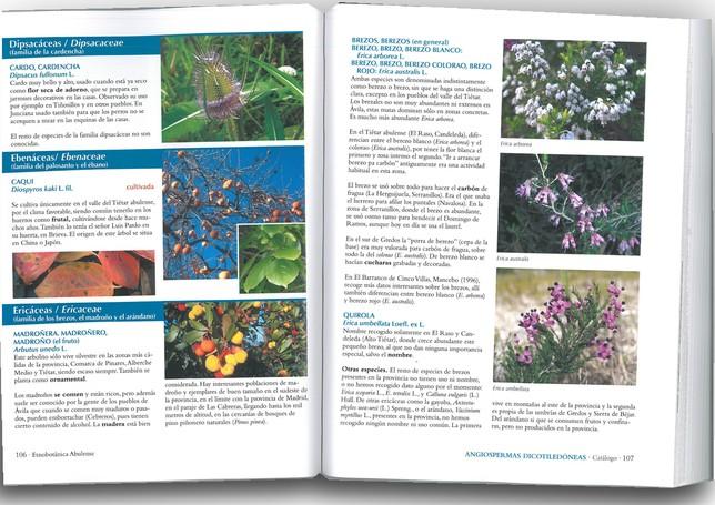 Fichas con algunas de las plantas recogidas en el libro
