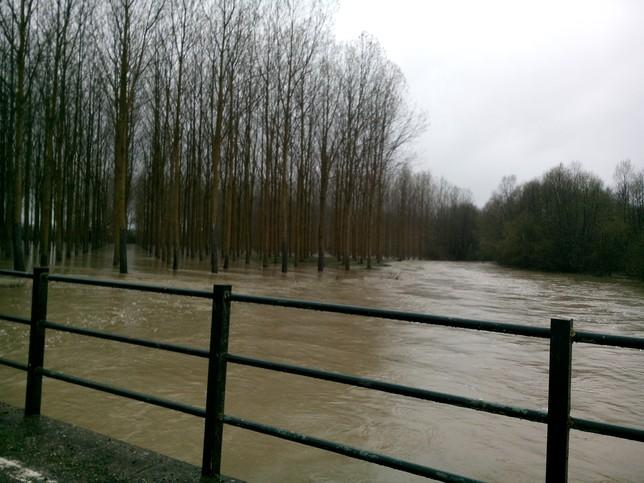 Imagen del río Carrión desbordado a su paso por Manquillos./