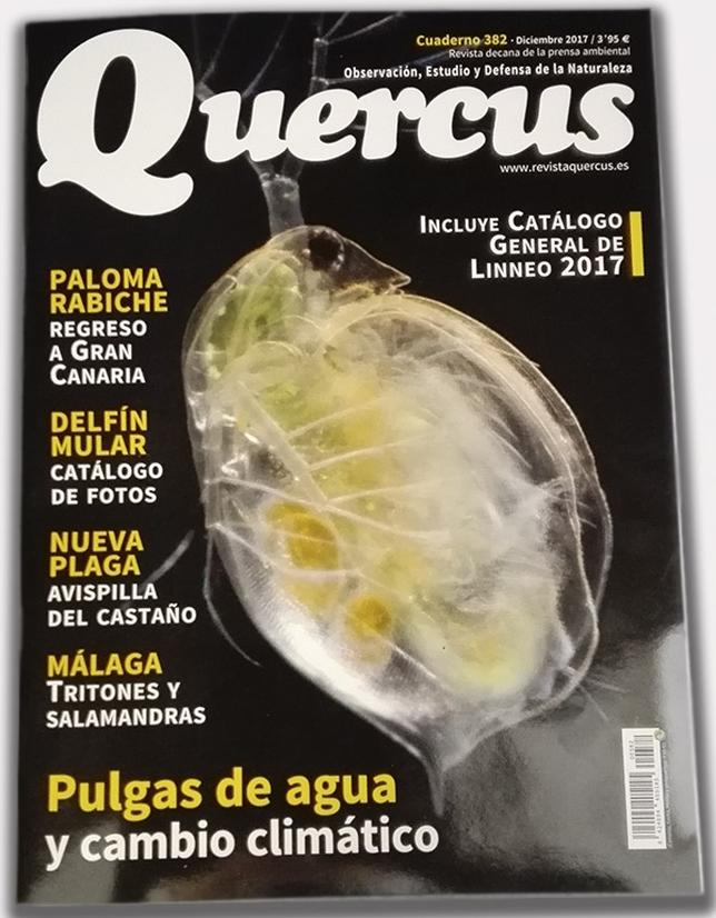 Portada de la revista Quercus de Diciembre