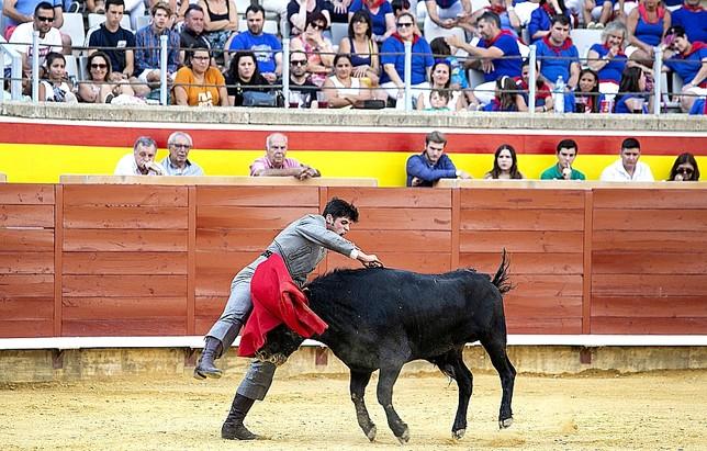 """Del novillo, hasta el rabo Ã""""scar Navarro"""