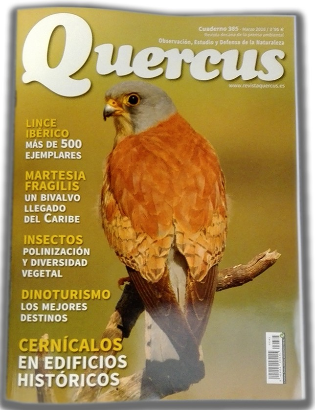 Portada de la revista Quercus de marzo