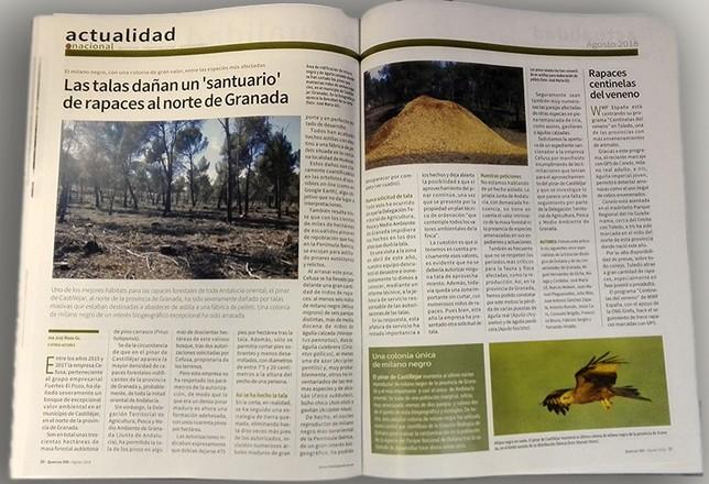 Noticias de actualidad en Quercus