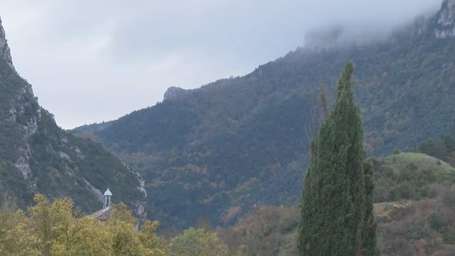 Más voces en contra de la presencia de osas en el Pirineo