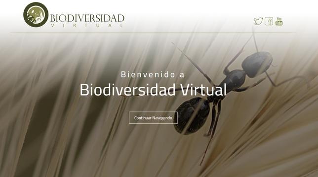 Pantalla principal de la web Biodiversidad Virtual