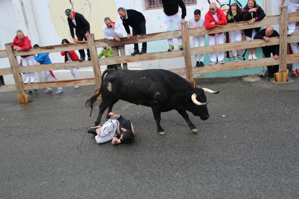 Corneado un mozo en el encierro de las fiestas de Sangüesa