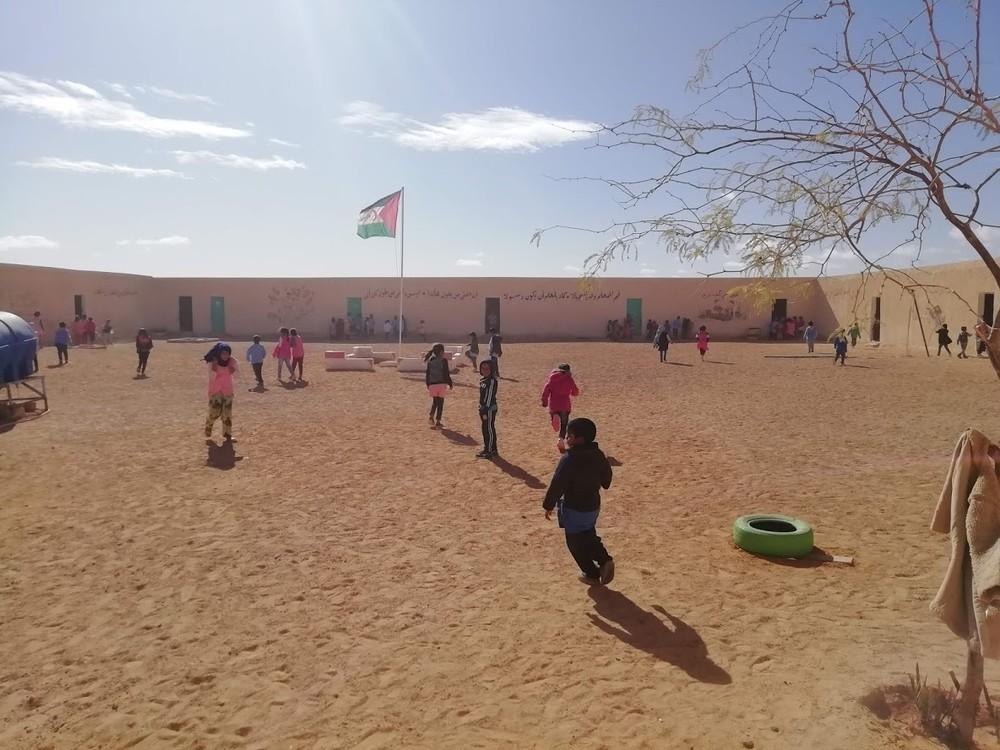De vuelta del Sáhara sanos y salvos